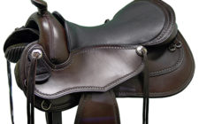 Freeform-Unity-Dressage-LW-brown-closeup-web