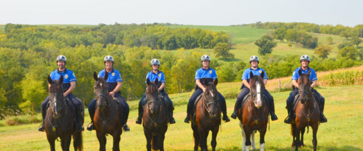 madison mounted police