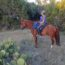 Bobbie Jo Lieberman in her Freeform Scout treeless saddle