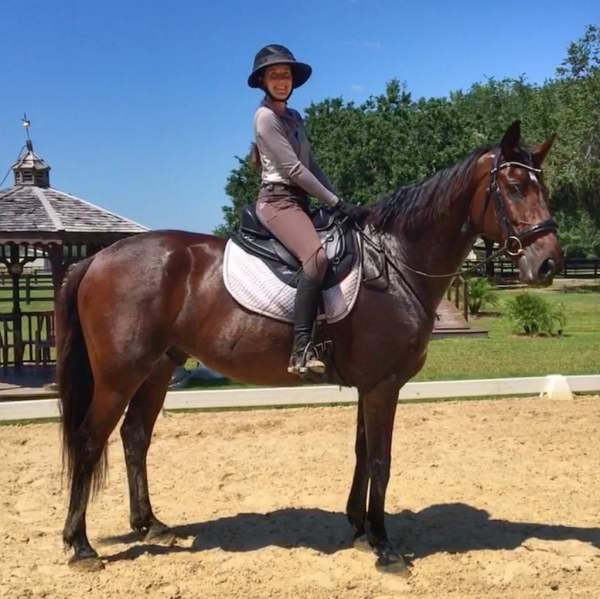 Rachel Stevick-Quires: Dressage / English Rep - Saddle Up Treeless